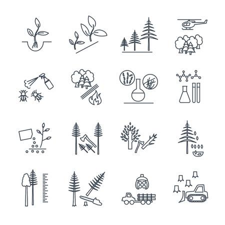conjunto de iconos de línea delgada proceso de producción forestal y la silvicultura
