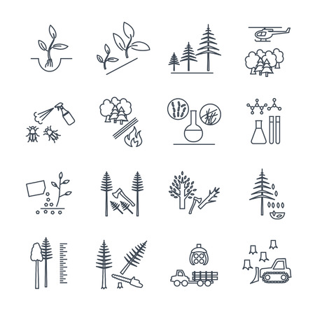 set of thin line icons forestry and silviculture production process