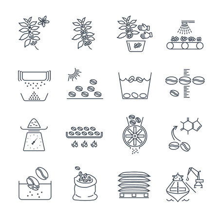 Set of thin line icons coffee production and processing. Vettoriali