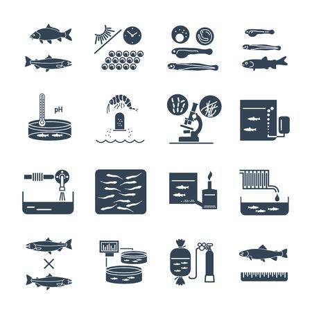 aquaculture: Set of black icons aquaculture production process. Illustration