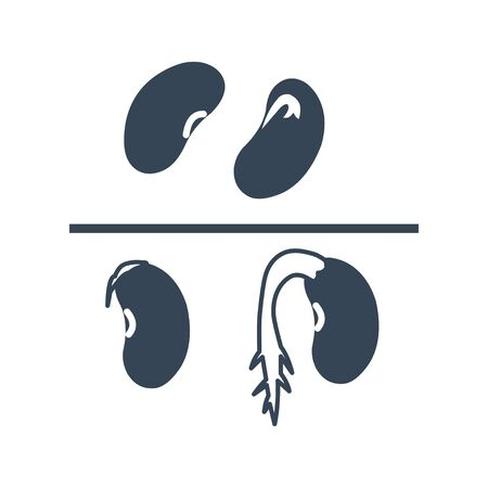 black icon haricot beans, grains