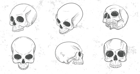 Set of skull heads Vector