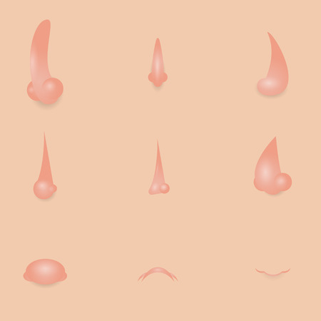 sniff: Collection of cartoon noses. Vector clip art illustration. Each on a separate layer.
