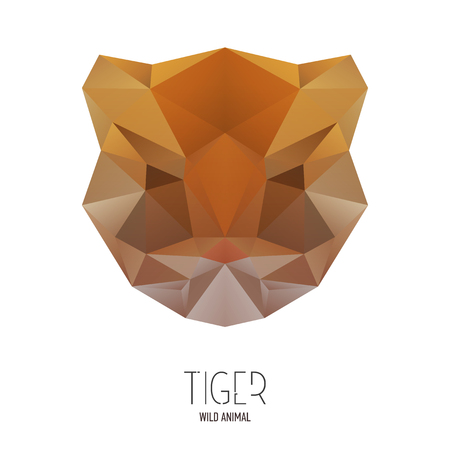 bengal: Bengal tiger portrait. Low poly design. Abstract polygonal illustration.