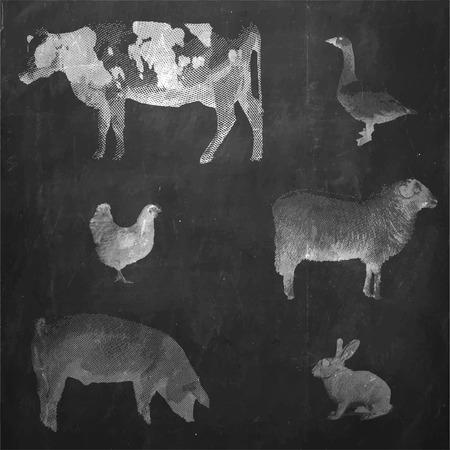 Boerderijdieren. Vintage gegraveerde illustratie op schone achtergrond. Koe, konijn, varken, gans, kip, schaap.