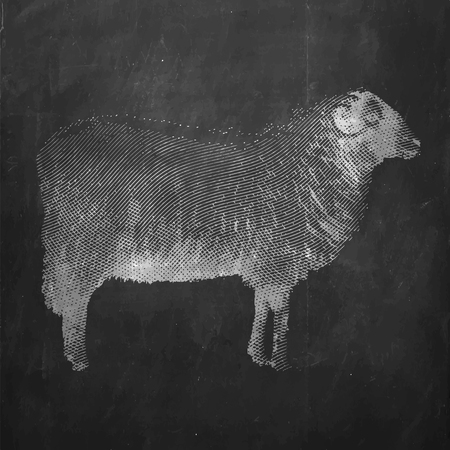engrave ink draw sheep illustration Çizim