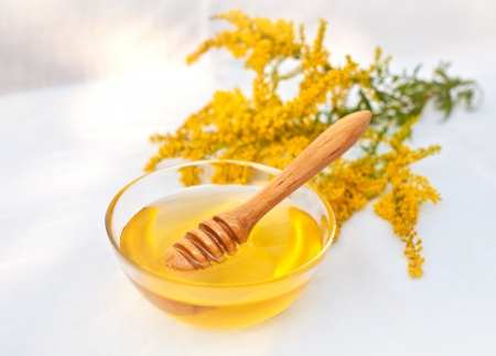 Flower honey Stock Photo - 17313726