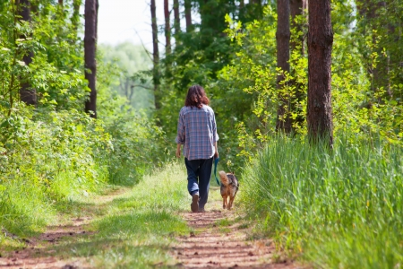 dirt road: Young woman with her dog walking in the wood Stock Photo