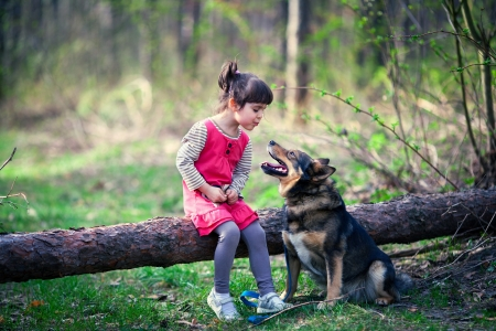 Happy little girl with dog in the wood photo