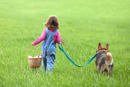 lead: Little girl with dog walking on the field back to camera Stock Photo