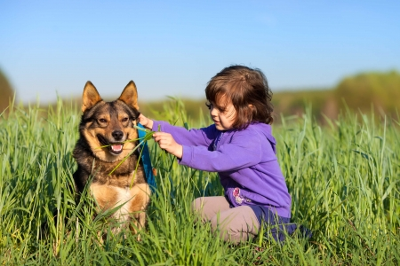 Happy little girl playing with dog on the grass photo