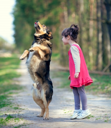Happy little girl playing with dog photo