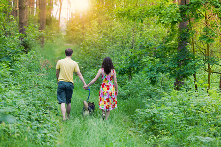 Young couple holding hands and walking with their dog in the forest