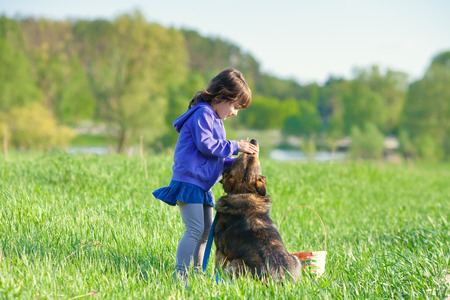 Happy little girl playing with dog on the meadow photo