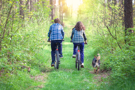 Young couple ride bicycles in the forest back to camera  Dog walking nearby photo