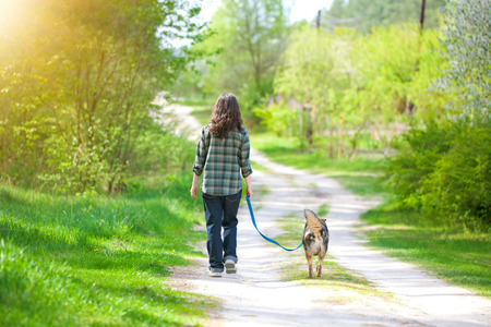 Young woman with her dog walking in the forest back to camera photo