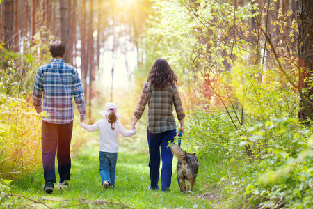 human back: Family with dog walking in the forest back to camera Stock Photo