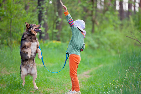 Little girl training dog in the forest