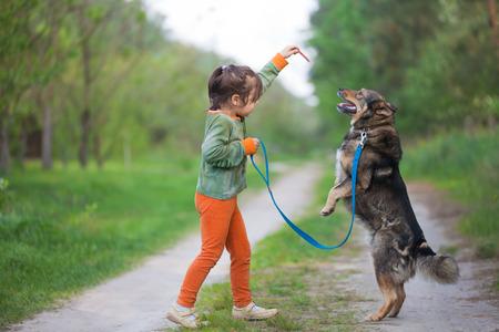 obedecer: Pequeño perro Entrenamiento de la chica en el bosque