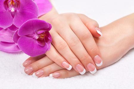Les mains de belle femme avec manucure parfaite française près des fleurs d'orchidées pourpres