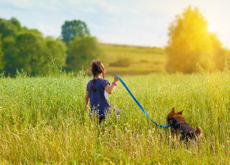 Kleines Mädchen mit Hund zu Fuß auf dem Feld zurück zu Kamera