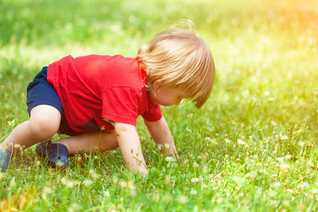 Happy little boy crawling in the grass photo