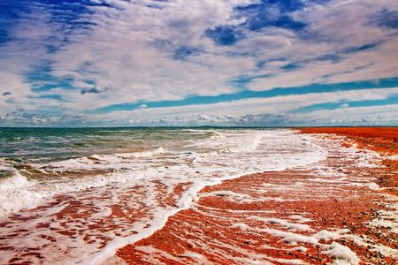 azov sea: Beautiful desert beach. Azov Sea, Crimea