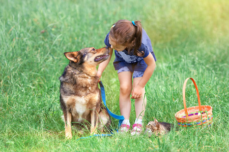 Little girl with dog and cat on picnic photo