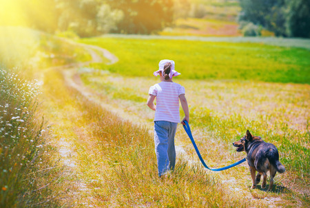 pet leashes: Little girl walking with dog at the meadow and keeping the dog on leash back to camera Stock Photo