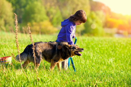 Little girl with dog on the meadow photo