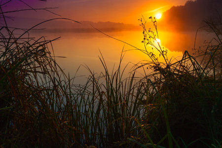 cane creek: Mist over the river at sunrise
