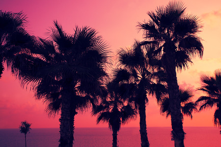 oasis at sunrise: Magic pink sunset over tropical beach Stock Photo