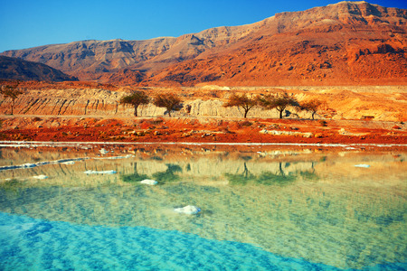 land scape: Dead sea salt shore