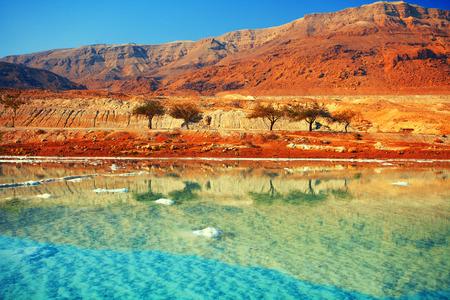 desierto: Mar muerto orilla sal