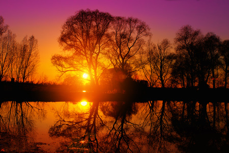 crick: Purple sunset over lake