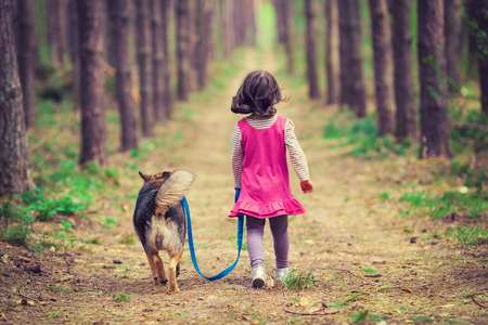 Little girl walking with dog in the forest back to camera Stock Photo