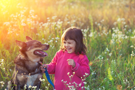Happy little girl with dog in the meadow at sunset