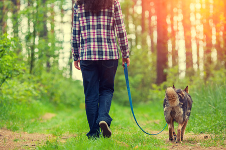 mujer con perro: Mujer joven con su perro caminando en el bosque