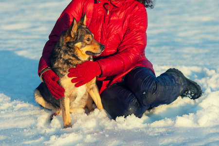 Girl playing with dog in snowy field photo