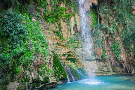 ein: Davids waterfall at Ein Gedi Nature Reserve Stock Photo