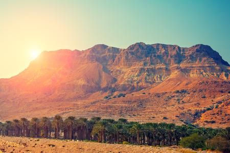 석양 이스라엘의 유대 사막 스톡 콘텐츠