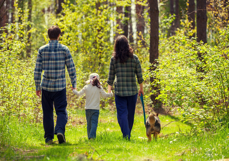Family with dog walking in the forest back to camera Imagens