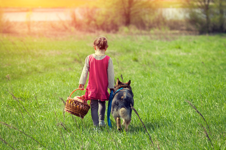 best friends: Little girl walking with dog on the meadow back to camera Stock Photo