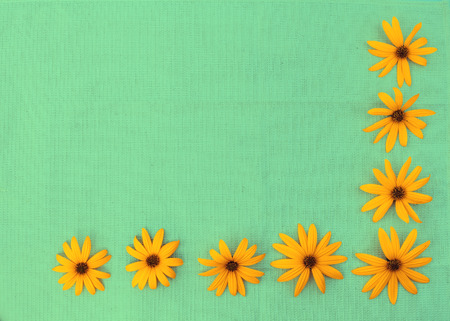 material flower: Background from gunny cloth and flowers