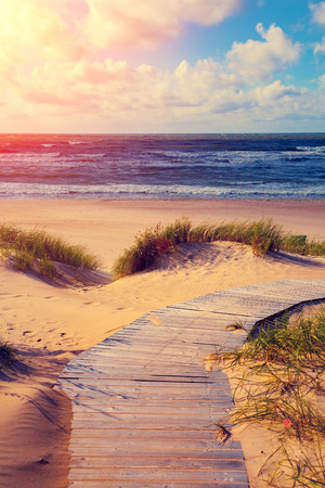 pathway: Marine landscape at sunset, wooden pathway to the sea