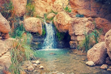 nature reserves of israel: Waterfall in Ein Gedi, Israel
