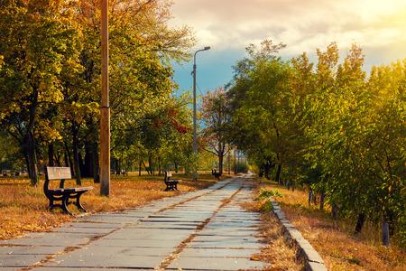 feuille arbre: Automne dans le parc de la ville Banque d'images