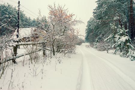 invierno rural paisaje nevado