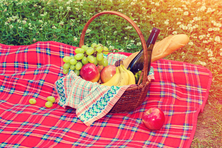 Picnic basket with fruits and wine on the blanket
