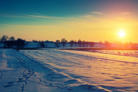snowy field: snowy field in winter at sunset